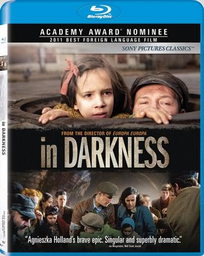 In Darkness 2011 BluRay 720p DTS x264-HDChina