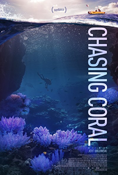 Chasing Coral 2017 1080p NF WEB-DL DD5.1 H264-SiGMA