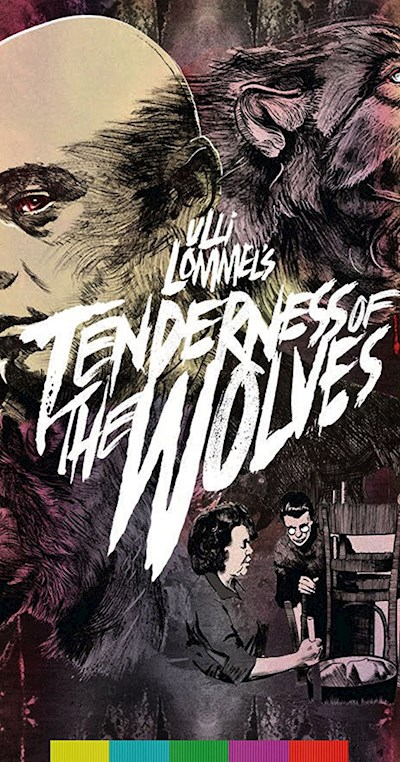tenderness of the wolves 1973 1080p BluRay FLAC x264-bipolar