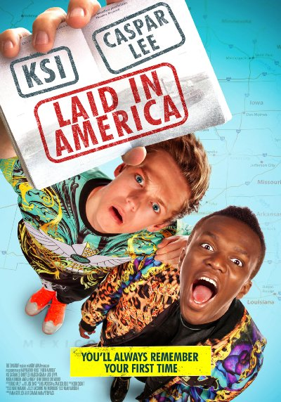 Laid in America 2016 BluRay REMUX 1080p AVC DTS-HD MA 5.1-FGT