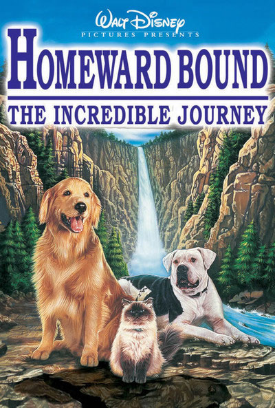 Homeward Bound 1993 1080p WEB-DL DD5.1 H264-BATIS [request]