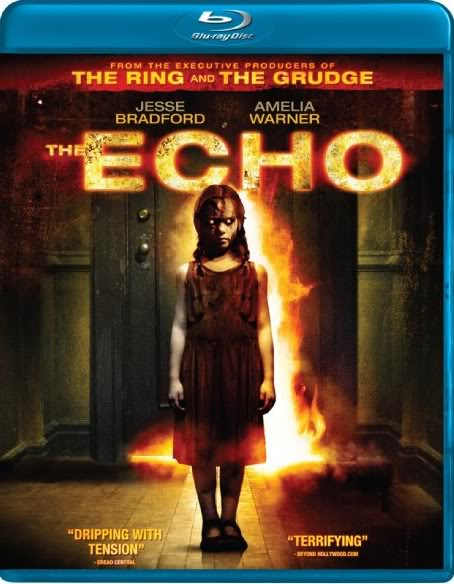 The Echo (2008) 720p BluRay DTS x264-DON