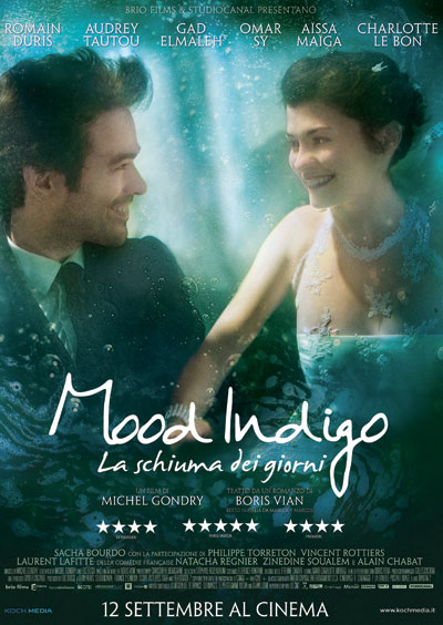 Mood Indigo 2013 French 1080p Bluray DTS x264-FAPCAVE