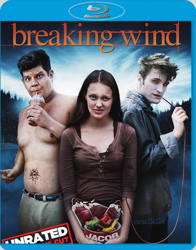 Breaking Wind 2011 1080p BluRay DTS x264-NOSCREENS