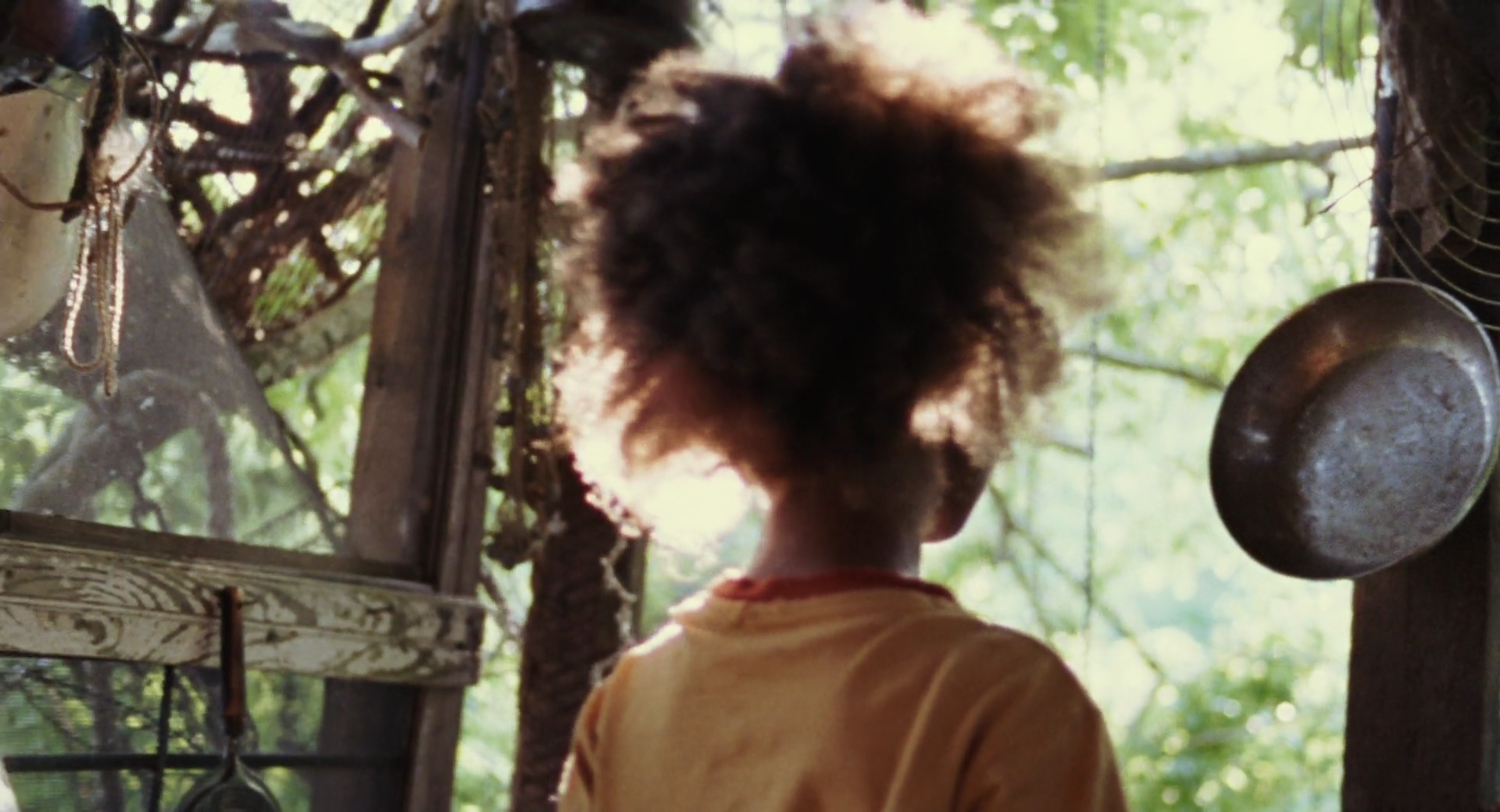 Beasts Of The Southern Wild 2012 1080p BluRay DTS x264-SPARKS
