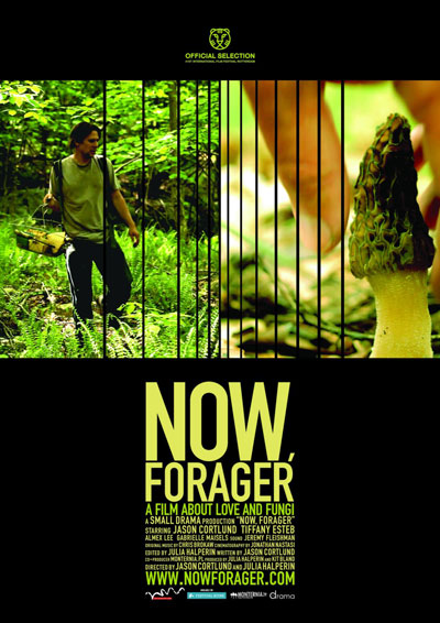 Now Forager 2012 1080p WEB-DL DD5.1 H264-PH