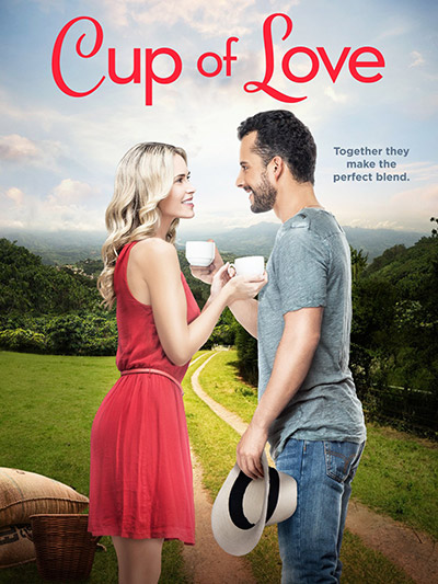 Cup of Love 2016 1080p WEB-DL DD5.1 H264-FGT