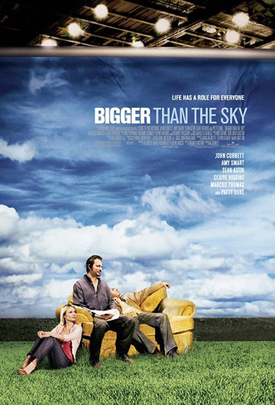 Bigger Than The Sky 2005 1080p WEB-DL AAC H264-FGT