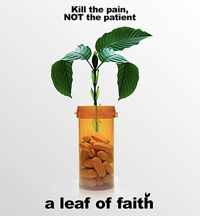 A Leaf of Faith 2018 1080p NF WEB-DL DD2.0 x264-NTG