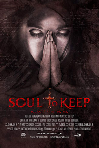 Soul to Keep 2018 BluRay REMUX 1080p MPEG-2 DTS-HD MA 5.1-EPSiLON