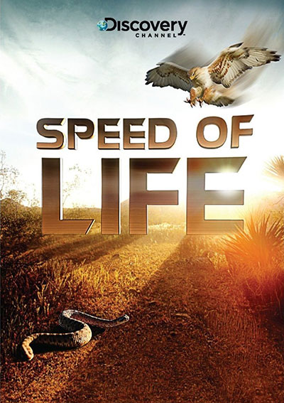Discovery Channel Speed of Life 2010 1080p BluRay DD5.1 x264-MTeam