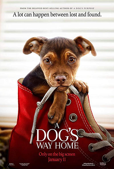 A Dogs Way Home 2019 720p BluRay DTS x264-DRONES