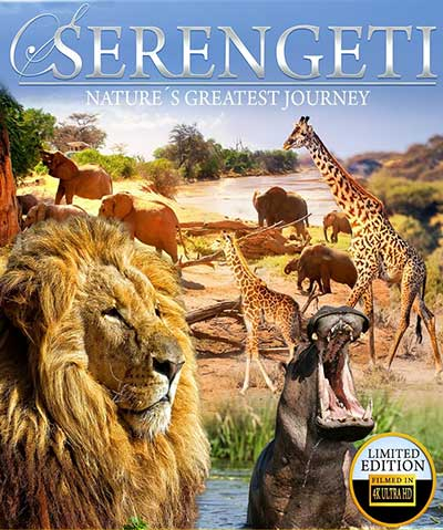 Serengeti Natures Greatest Journey 2015 2160p UHD BluRay DTS-HD MA 5.1 x265-GUACAMOLE