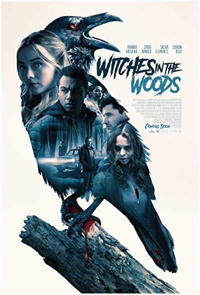 Witches in the Woods 2019 1080p BluRay DTS-HD MA 5.1 x264-PussyFoot