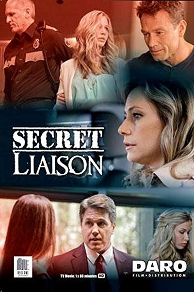 Secret Liaison 2013 AMZN 1080p WEB-DL DD2.0 x264-ABM