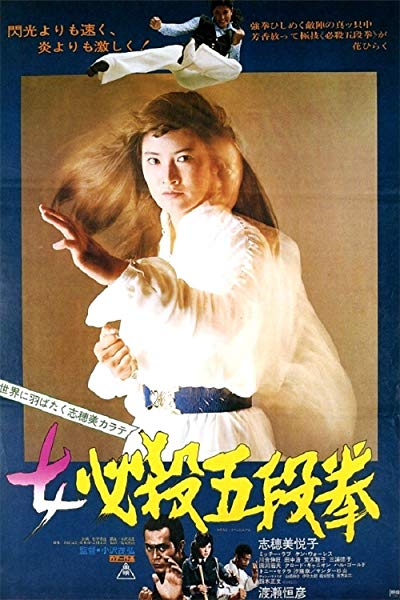 Sister Street Fighter Fifth Level Fist 1976 720p BluRay DD1.0 x264-GHOULS