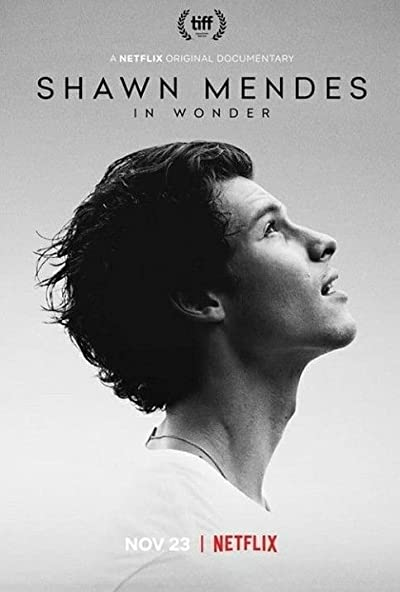 Shawn Mendes In Wonder 2020 1080p WEB-DL DDP5.1 Atmos H264-NTb