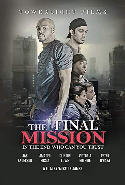 Final Mission 2018 1080p WEB-DL DD5.1 H264-FGT