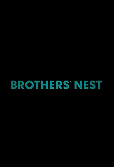 Brothers Nest 2018 1080p WEB-DL DD5.1 H264-FGT