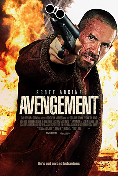 Avengement 2019 1080p BluRay DTS x264-RUSTED