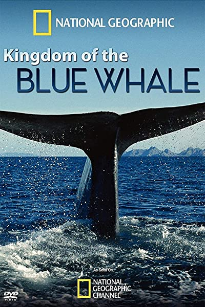 Kingdom of the Blue Whale 2009 1080i BluRay REMUX VC-1 DD5.1 - KRaLiMaRKo