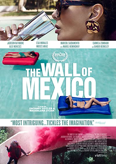 The Wall of Mexico 2020 1080p WEB-DL DD5.1 H264-EVO