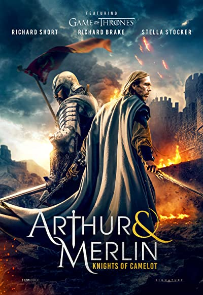 Arthur and Merlin Knights of Camelot 2020 BluRay REMUX 1080p AVC DTS-HD MA 5.1-1YR1