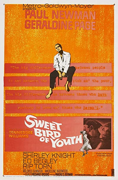 Sweet Bird of Youth 1962 1080p BluRay FLAC2.0 x264-PTer