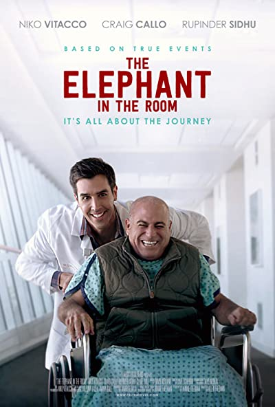 The Elephant in the Room 2020 AMZN 1080p WEB-DL DDP5.1 H264-WORM