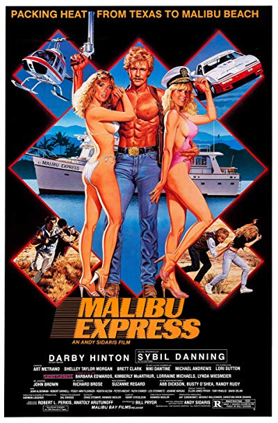 Malibu Express 1985 720p BluRay DTS x264-BRMP