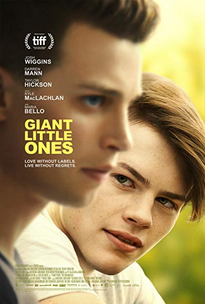 Giant Little Ones 2019 1080p WEB-DL DD5.1 H264-EVO