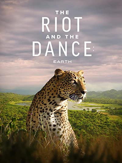 The Riot and the Dance 2020 1080p BluRay DTS-HD MA 5.1 x264-PussyFoot