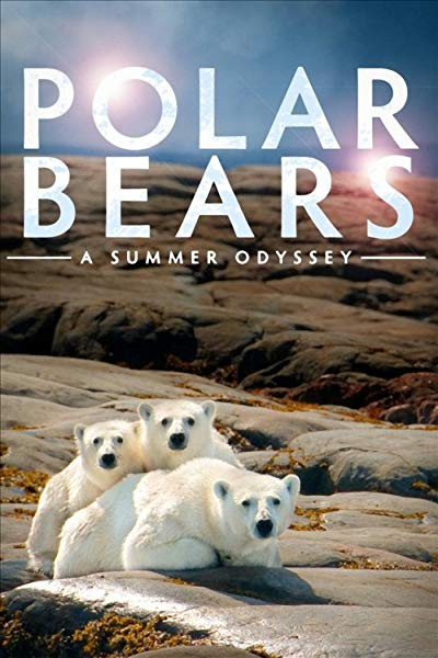Polar Bears - A Summer Odyssey 2012 1080p BluRay 3D Left-Eye REMUX AVC DTS-HD HR 5 1 - KRaLiMaRKo
