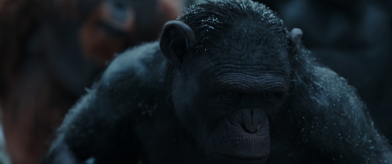 War For The Planet Of The Apes 2017 720p BluRay DTS x264-BLOW