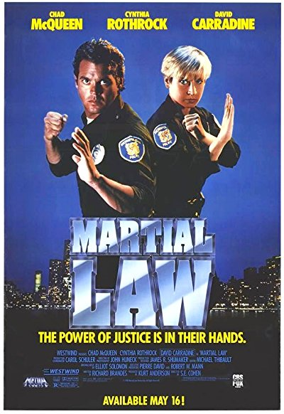 Martial Law 1990 BluRay REMUX 1080p AVC DD2.0-EPSiLON