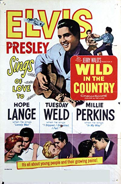 Wild in the Country 1961 BluRay REMUX 1080p AVC DTS-HD MA 2.0-FGT