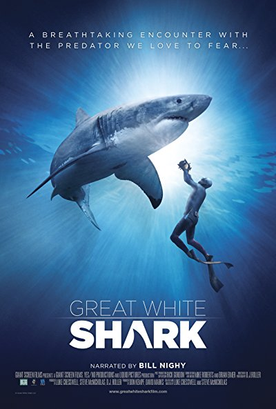 Great White Shark 2013 2160p UHD BluRay DTS-HD MA 5.1 x265-WhiteRhino