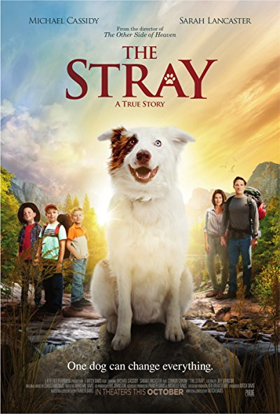 The Stray 2017 BluRay 1080p DTS-HD MA 5.1 x264-MTeam