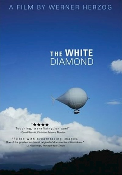 The White Diamond 2004 BluRay REMUX 1080p AVC DTS-HD MA 5.1-BluHD