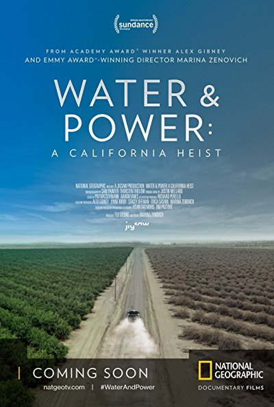 Water And Power A California Heist 2017 1080p WEB-DL DD5.1 x264-AMRAP