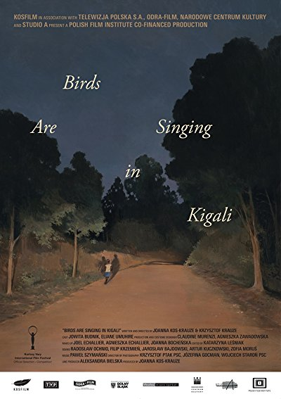 birds are singing in kigali 2017 1080p BluRay DTS x264-rovers