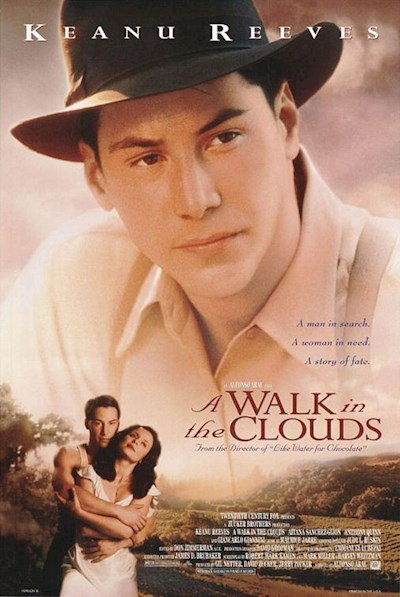 A Walk In The Clouds 1995 720p BluRay DTS x264-CiNEFiLE