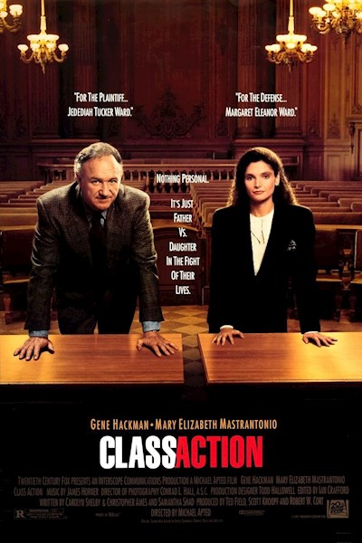 Class Action 1991 1080p BluRay DTS x264-FGT