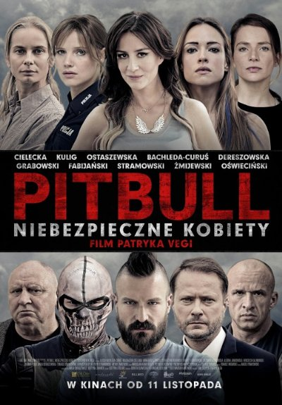 Pitbull Tough Women 2016 1080p BluRay DTS x264-ROVERS