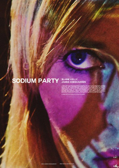 Sodium Party 2013 1080p WEB-DL AAC x264-iNTENSO