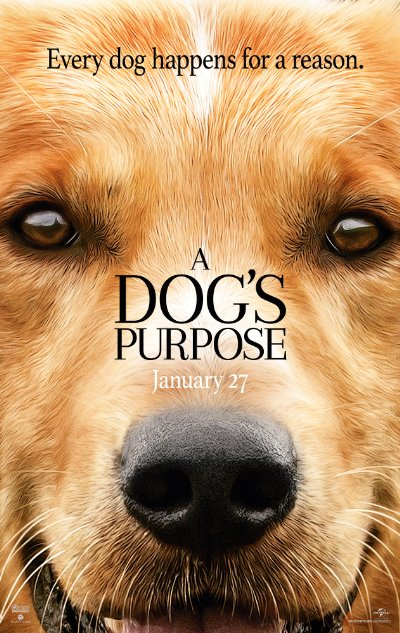 A Dogs Purpose 2017 720p BluRay DTS x264-HDChina