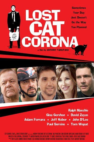 Lost Cat Corona 2017 1080p WEB-DL DD5.1 H264-FGT