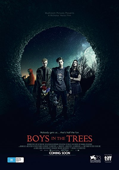 Boys in the Trees 2016 720p BluRay DTS x264-BiPOLAR