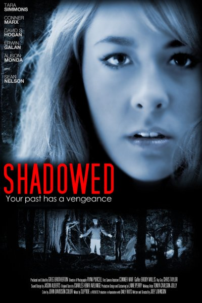Shadowed 2012 1080p WEB-DL AAC x264-iNTENSO