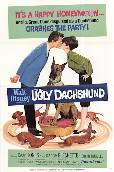 The Ugly Dachshund 1966 720p HDTV DD5.1 x264-REGRET
